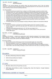 resume achievements examples digital marketing cv example with writing guide and cv template digital marketing cv example page 2