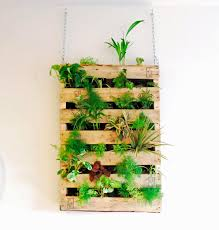 Outdoor Wall Planters by Tutorial Awesome Indoor Living Wall Vertical Garden Made From