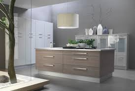 Pictures Of Kitchen Cabinet Doors Materials And Doors Design In Laminate Kitchen Cabinets Kitchen