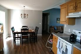 painting the kitchen cabinets dark grey part 2 007 playuna