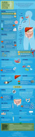 37 best nursing digestive system images on pinterest nursing