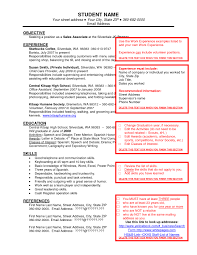 Best Resume Job by Examples Of Resumes Resume Sample For Banking Job Good