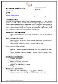 Accounting Resume Examples by Over 10000 Cv And Resume Samples With Free Download Professional