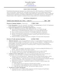 Executive Summary Resume Example Template Resume Assembly Resume Sample