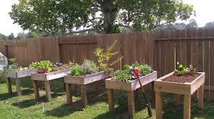garden box ideas garden design ideas