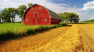 farm barn yard cake ideas and winter ideas timber frame places to
