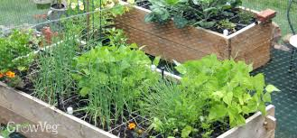 Planning A Raised Bed Vegetable Garden by Building Raised Beds That Last