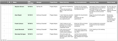 Project Management Spreadsheet How To Create The Perfect Project Status Report Checklist