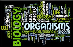 Biology Assignment Help  Biology Homework Help  Biology Project Help AssignmentDesign com