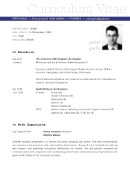 Insurance Sales Agent Resume  receipt free printable     real estate agent resume template on insurance sales agent career