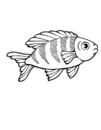 tropical fish coloring pages getcoloringpages com