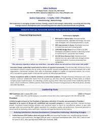 Executive Summary Resume Example Template Resume Ceo Resume Sample