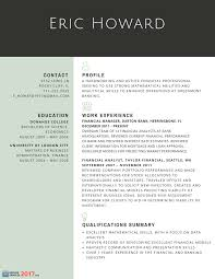 Sample Resumes For Professionals by Finest Resume Samples For Experienced Finance Professionals