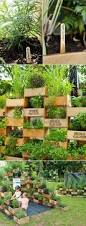 Vertical Garden Vegetables by 272 Best Vertical Gardening Images On Pinterest Gardening