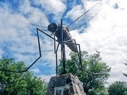 lexus lx for sale in canada canada u0027s 10 most popular destinations u2014for mosquitoes