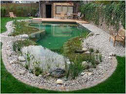 backyards superb interesting small backyard pool design with