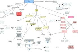Concept Maps Diabetic Ketoacidosis Concept Map Nurse Life Pinterest