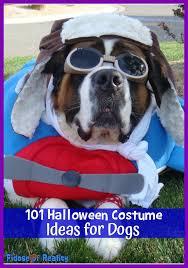Winnie Pooh Dog Halloween Costume 100 Halloween Costume Ideas Dogs Fidose Reality
