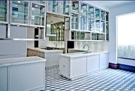 Kitchen Cabinet Glass Cabinet Inspiring Metal Kitchen Cabinets For Home Designer Metal