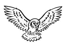 best 25 owl silhouette ideas on pinterest silhouettes