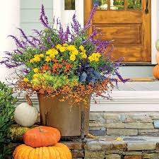 276 best gardens in containers images on pinterest gardening