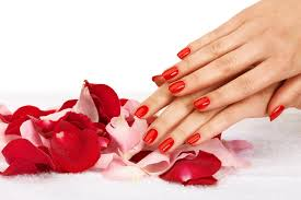 daisy nails nail salon nail spa european salon manicures
