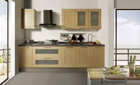 Small Kitchen Design Pictures by Wooden Cabinets For Small Kitchen U2013 Home Design And Decor