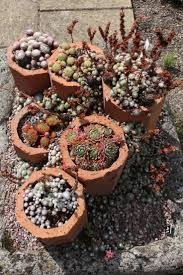 garden rockery ideas 25 best rock garden images on pinterest gardens rockery garden