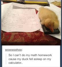 Post your homework now to get help from out team of expert tutors