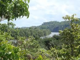Paru River