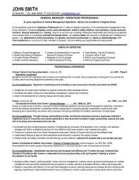 Director Of Operations Resume Sample by 8 Best Best It Director Resume Templates U0026 Samples Images On
