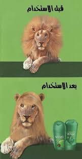 صور مضحكة images?q=tbn:ANd9GcR
