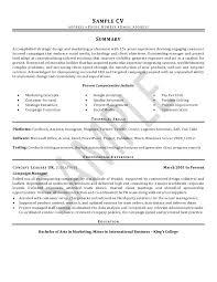 Professional CV And Resume Writing   BritishEssayWriter Jobs in Pakistan   ROZEE PK