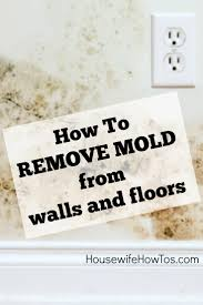 Bedroom Wall Gets Wet How To Remove Mold From Walls Housewife How To U0027s