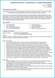 Resume Profile Section Examples by Digital Marketing Cv Example With Writing Guide And Cv Template