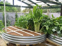 Type Of Systems Backyard AquaponicsBackyard Aquaponics - Backyard aquaponics system design