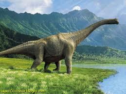 ابداع فناوری جدید برای اندازه گیری دقیق دایناسورها