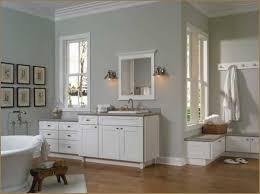 Small Master Bathroom Design Ideas Colors Bathroom Best Bathroom Designs Small Bathroom No Window Bathroom