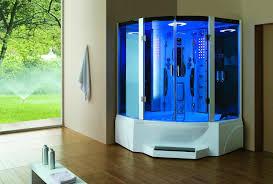 eagle bath pivot door steam shower enclosure unit bathtubs plus