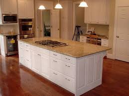 Kitchen Cabinet Inside Designs by How Do You Build Kitchen Cabinets Bjhryz Com