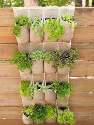 Vertical Garden Vegetables by Garden And Lawn Great Vertical Vegetable Garden Hanging Pocket