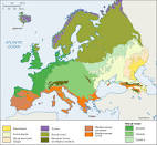 natural vegetation of europe