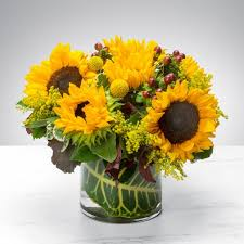 Flowers Cape Town Delivery - fort myers florist flower delivery by ruth messmer florist