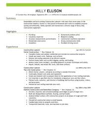 Example Job Resume by Carpenter Resume Example Carpenters Union Resume Professional