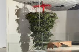 Victoria Beckham Home Interior by London U0027s Most Beautiful Christmas Trees