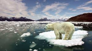 global warming essay kids jpg