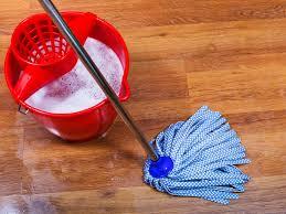 quick home remedies for fleas grandma u0027s full guide