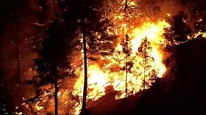 New Mexico Wildfire Map by New Mexico U0027s Dog Head Fire Spreads To 16 000 Acres Nbc News