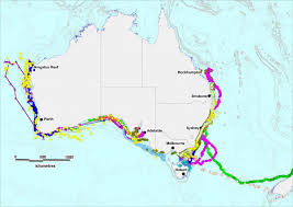 Florida Shark Attack Map by Tracking Port Fairy U0027s Great White Sharks U2013 Port Fairy Ghost Stories