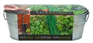 herb garden kit gardening ideas